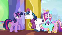 Shining Armor recognizes Twilight's look MLPBGE