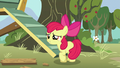 Apple Bloom asks her friends what their cutie marks are S5E4.png
