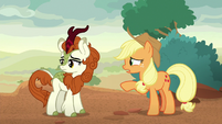 "Applejack ""it's not a sore subject"" S8E23"