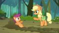 Applejack 'You seem a little jumpy' S3E06.png