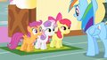 CMC in front of Rainbow Dash S1E23.png