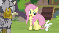 "Fluttershy ""you mean me and Angel?"" S9E18"