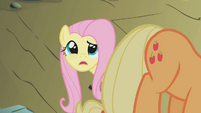 Fluttershy -because he wasn't a dragon- S1E07