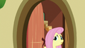 Fluttershy nervously answers the door S6E15.png