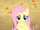 Fluttershy was startled S2E14.png