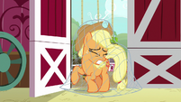 Net drops on Applejack S9E10