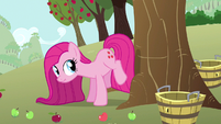 Pinkie Pie has a plan S3E13