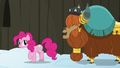 "Prince Rutherford ""yak not mad at pink pony"" S7E11.png"