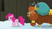 "Prince Rutherford ""yak not mad at pink pony"" S7E11"