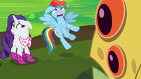 "Rainbow Dash ""hold that thought!"" S8E17"
