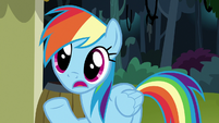 "Rainbow Dash ""maybe she went to"" S7E18"