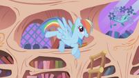 Rainbow Dash -I got the ticket- 1 S01E03