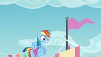 Rainbow Dash a punto de entrelazar los banderines a la bandera S5E24