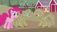 Rainbow Dash e Applejack se olhando T4E03