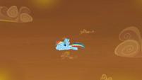 Rainbow Dash flying around the sky S9E2