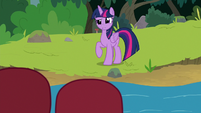 Twilight Sparkle looking very confused S8E9
