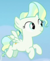 Vapor Trail filly ID S6E24