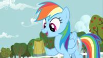 201px-Rainbow Dash all right S2E15-W15
