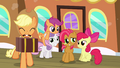 Applejack, CMC and Babs Seed S3E04.png