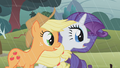 Applejack and Rarity stunned S1E8.png