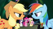 Applejack e Rainbow discutindo T4E02