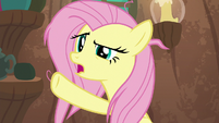 "Fluttershy ""he knows I have work to do"" S9E18"