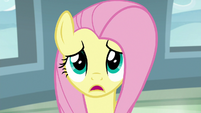 "Fluttershy ""in her adventures"" S9E21"