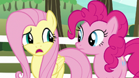 "Fluttershy ""we don't have a team"" S6E18"