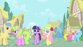Fluttershy incognito S1E20.png
