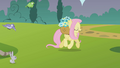Fluttershy lalala S01E10.png
