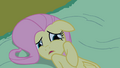 Fluttershy looks at Princess Luna in fear S2E04.png
