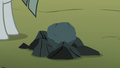 Ordinary-looking rock on the farm S8E3.png