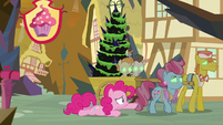 Pinkie fails to stop Sombrafied Cake family S9E2