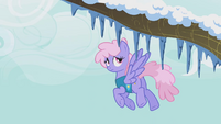 Rainbowshine looks at the icicles on the trees S1E11