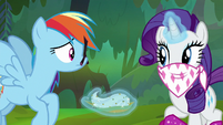 Rarity covers her nose with a bandana S8E17