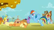 S01E13 Rainbow używa skrzydeł by nie upaść