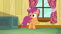 "Scootaloo ""I wasn't crying"" S8E12"