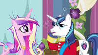 Shining Armor oh my head S2E26
