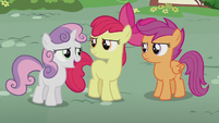 "Sweetie Belle ""she could use a friend or two"" S5E18"