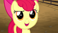 Apple Bloom asks Applejack about the rodeo S5E6.png