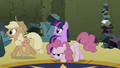Applejack and Pinkie walking away S2E01.png
