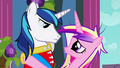 Cadance and Shining Armor gaze S02E26.png