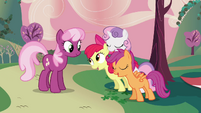 Cheerilee meeting CMC S2E17