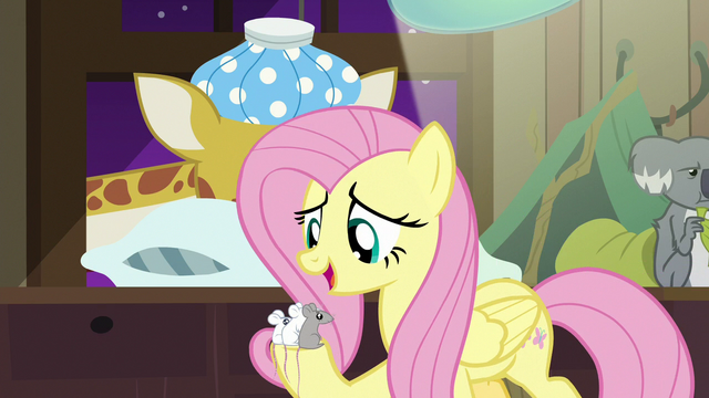"""File:Fluttershy """"every mouse has gotta wait their turn"""" S7E5.png"""