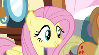 Fluttershy 'what kind of a rock are they ' S4E18