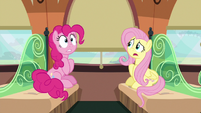 Fluttershy --what zone Rainbow Dash is talking about-- S6E18
