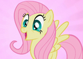 Fluttershy S2E7 thumb.png
