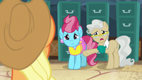 "Mayor Mare ""hard to know when it is a good time"" S7E13"