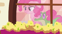 Pinkie -and I need it now- S5E11