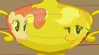 Pinkie Pie joins Applejack 1 S1E4